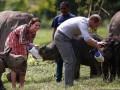 Міддлтон нагодувала слонів, а принцу Вільяму перетисли руку