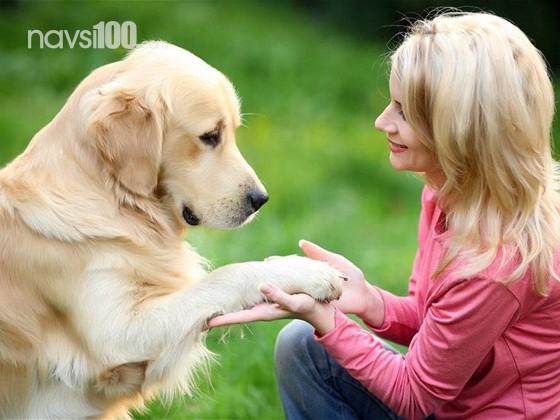 Доведено: собаки краще розпізнають людей, аніж детектор брехні